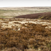 Thumbnail image for Cambrian Way: Day 7 – Forest Coalpit to Lord Hereford's Knob (or Twmpa for the more delicate reader)