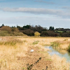 Thumbnail image for Canterbury Ways: The Stour Valley Walk to Upstreet