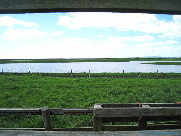 Newport Wetlands Nature Reserve on the Wales Coast Path photographed by Charles Hawes. Walking in Wales.