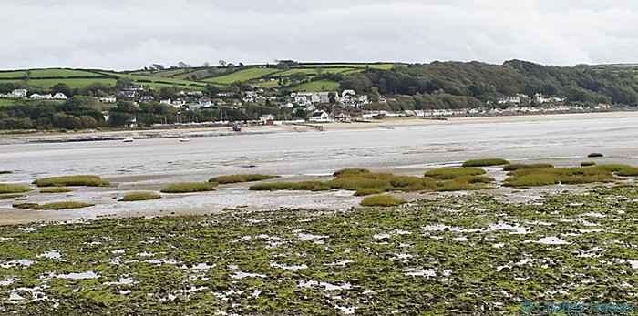 View across the Towy river to Ferryside taken from The Wales Coast Path between Carmarthen and St Clears and photographed by Charles Hawes. Walking in Wales.