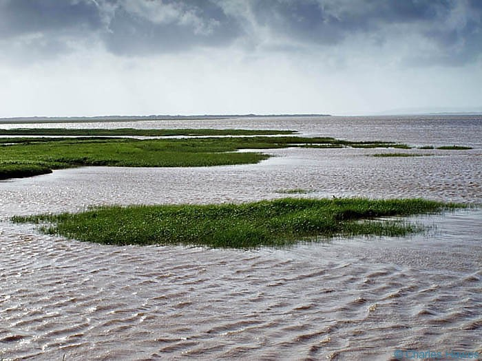 Marshes near Kidwelly photographed on The Wales Coast path between Llanelli and Kidwelly by Charles Hawes. Walking in Wales.