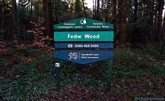 Forestry Commission sign at entrance to Fedw Wood, Monmouthshire, Wales, photographed by Charles Hawes