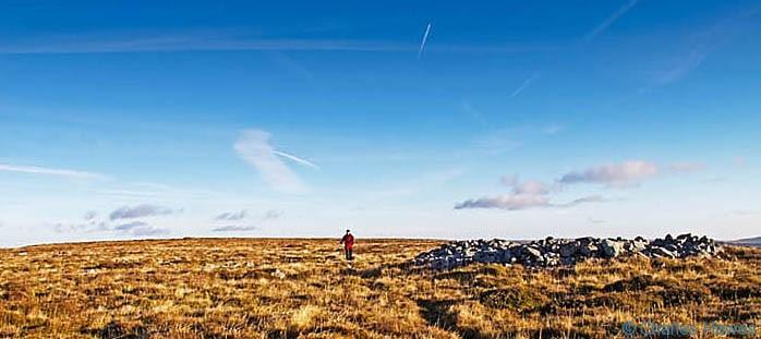 Post image for A circular walk on Mynydd Llangatwg, Powys