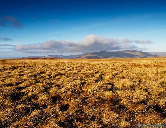 Moorland of Mynydd Llangatwg Powys, photographed by Charles Hawes
