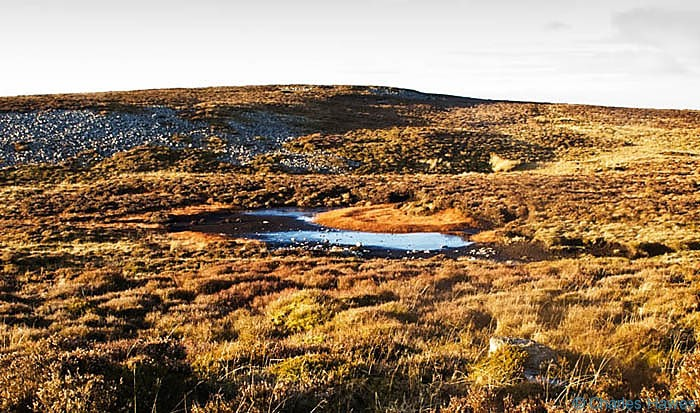 Little pond on Mynydd Llangatwg, Powys, photographed by Charles Hawes