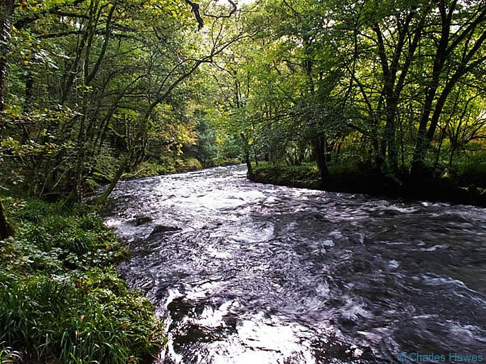 River Barle near Tarr Steps, Exmoor, photographed by Charles Hawes. Walking in Exmoor.