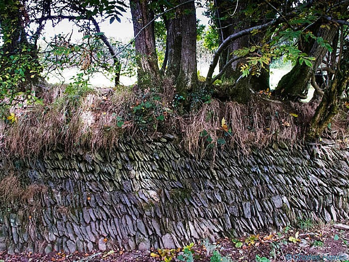 Filed boundary stone wall near Winsford in Exmoor, photographed by Charles Hawes. Walking in Exmoor.