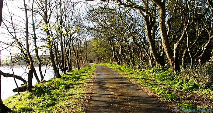 Lane by the side of Angle Bay near Angle on the Wales Coast Path, photographed by Charles Hawes