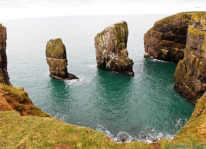 Stack Rocks also known as Elegug Stacks, on the Wales Coast Path in Pembrokeshire, Photographed by Charles Hawes