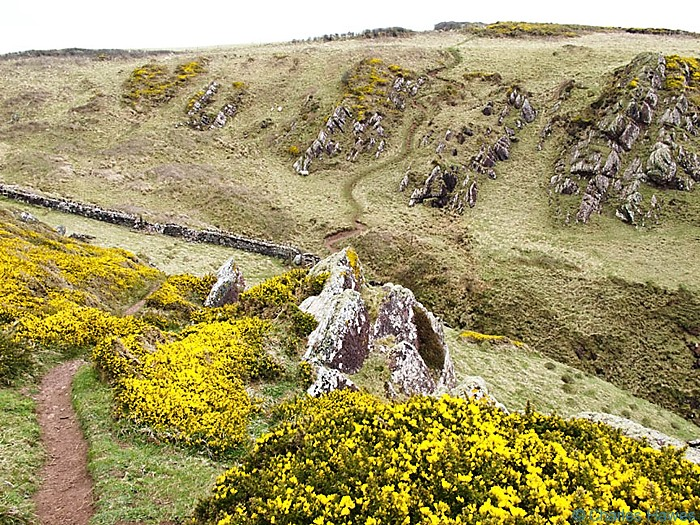 Steep valley on the Wales Coast Path, Pembrokeshire, near Angle, photographed by Charles Hawes