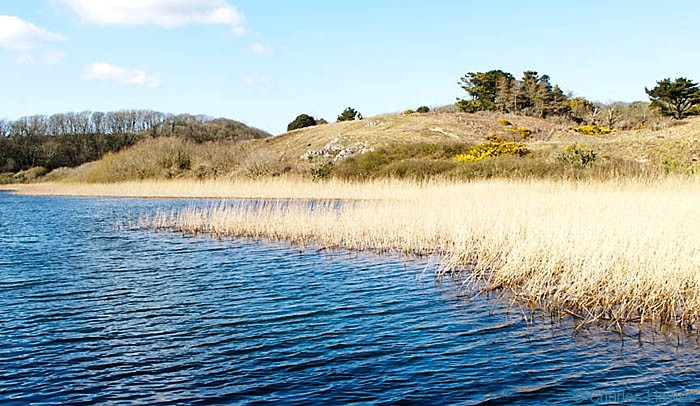 Bosherston Lily Ponds near Bosherston, Pembrokeshire, photographed by Charles Hawes