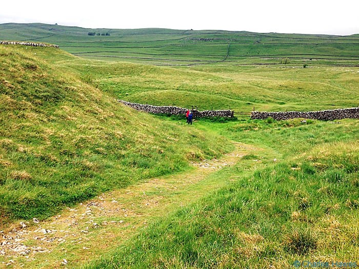 The Dales Way near Lea Green, North Yorkshire, photographed by Charles Hawes
