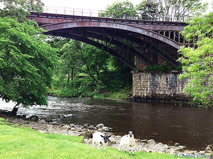Disused railway bridge over the river Dee near Brigflatts on The Dales way, photographed by Charles Hawes