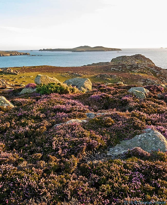 View to Ramsey Island, photographed from the Wales Coast Path on St David's Head by Charles Hawes