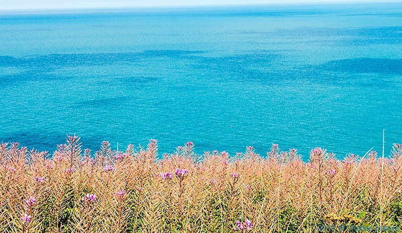 Fishguard Bay, photographed from The Wales Coast path by Charles Hawes