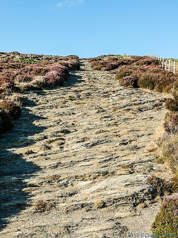 The Pembrokeshire Coastal Path near Foel Fach, photographed by Charles Hawes