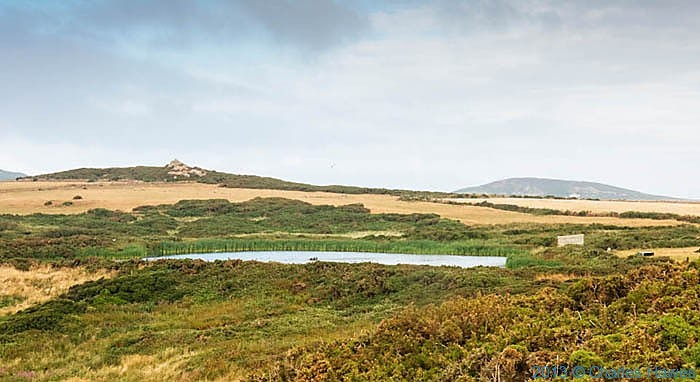 Pond by Lower Treginnis, Pembrokeshire, photographed from The Wales Coast Path by Charles Hawes