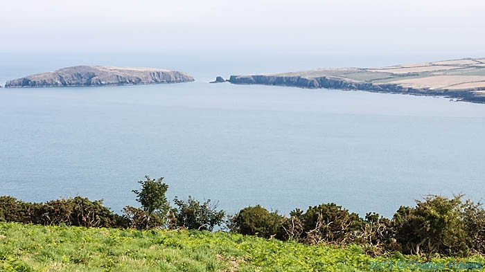 View to cardigan Island from Cemaes Head, Pembrokeshire, photographed by Charles Hawes