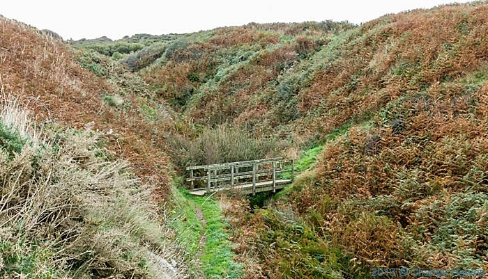 Footbridge across little valley near Aberporth, Ceredgion on The wales Coast Path, photographed by Charles Hawes