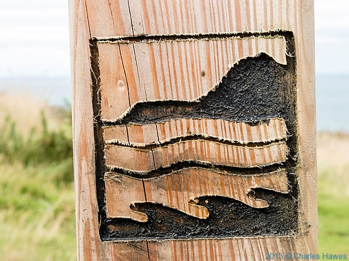 Finger post sign for Ceredigion Coast Path