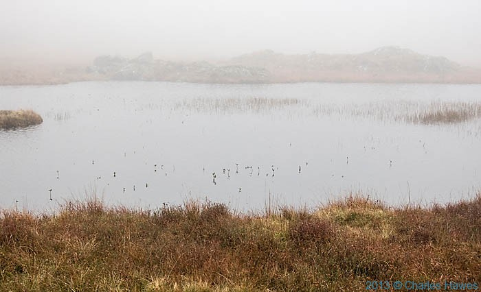 Lake above the Nantmor Mountain Centre, Snowdonia, photographed by Charles Hawes