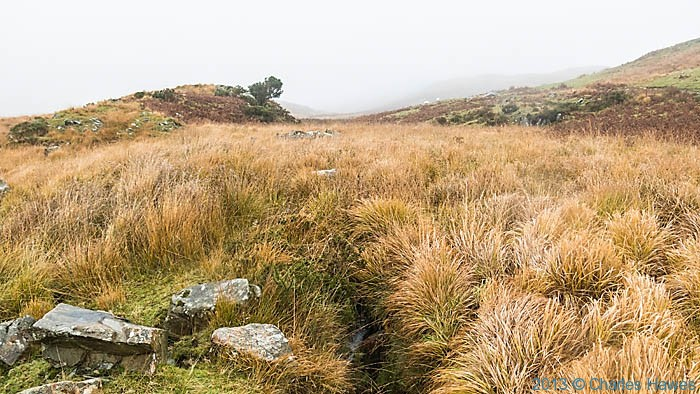 Boggy moor above the Nantmor Mountain Centre, Snowdonia, photographed by Charles Hawes