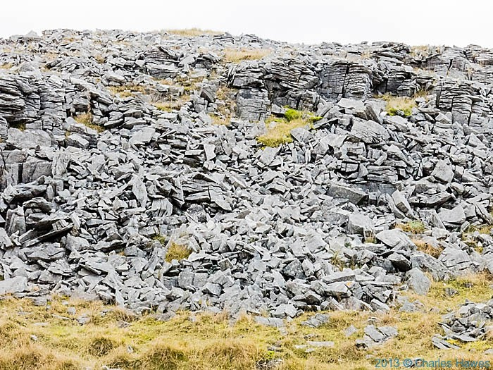 Limestone outcrop  in the Ogof Ffynnon Ddu National Nature Reserve photographed by Charles Hawes