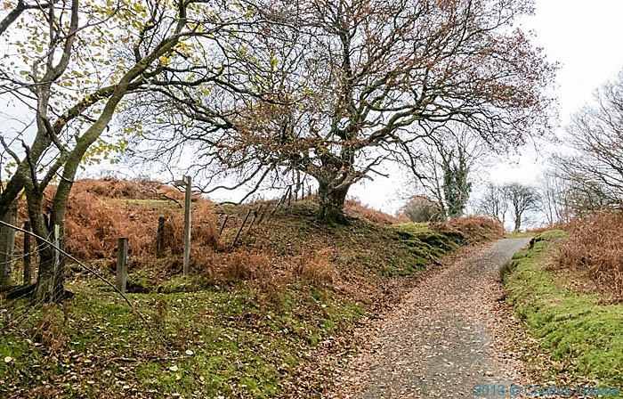 The wales Coast  Path above Cwm gila near Machynlleth, photographed by Charles Hawes