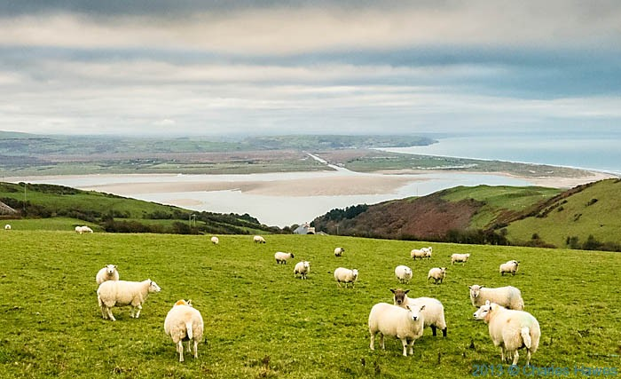 View over the Dyfi estuary towrds Borth photographed from The Wales Coast path by Charles Hawes