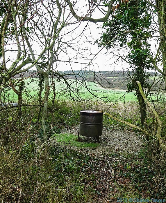 Pheasant feeder near Grovely Wood, Wiltshire, photographed by Charles Hawes