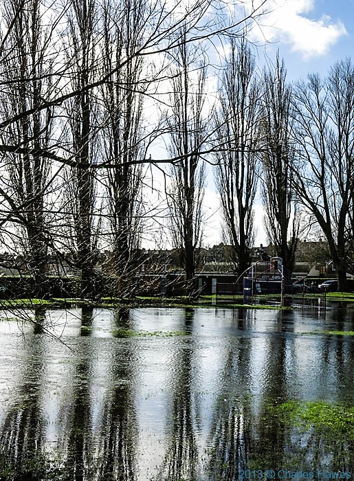 Flooded park in Salisbury, photographed by Charles Hawes