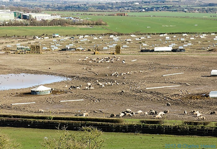 Old Sarum airfield and pig farm, near salisbury, photographed by Charles Hawes