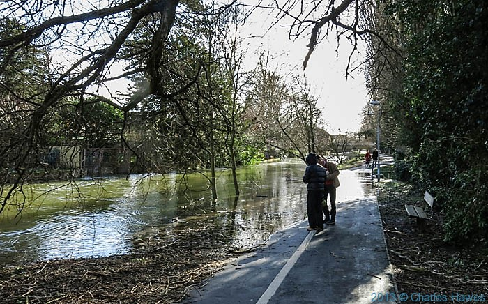 River Avon in Salisbury flooding adjacent footpath, photographed by Charles Hawes