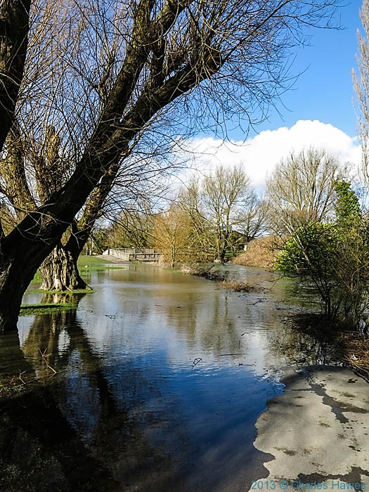 River Avon flooding in Salisbury, photographed by Charles Hawes