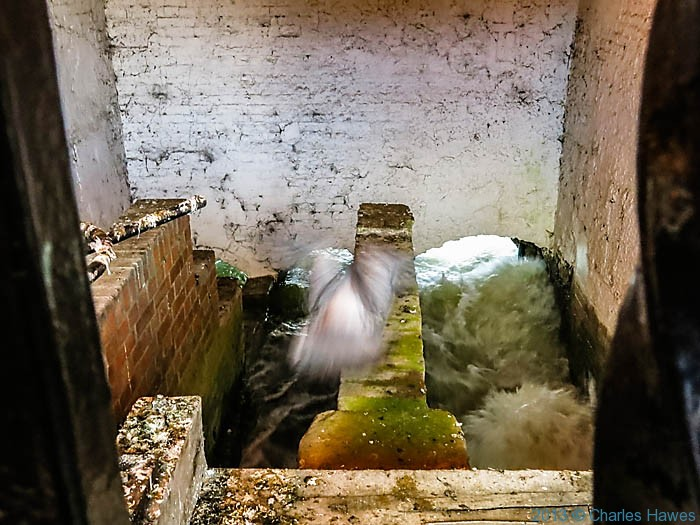 Mill race at the back of Town Mill, Salisbury, photographed by Charles Hawes