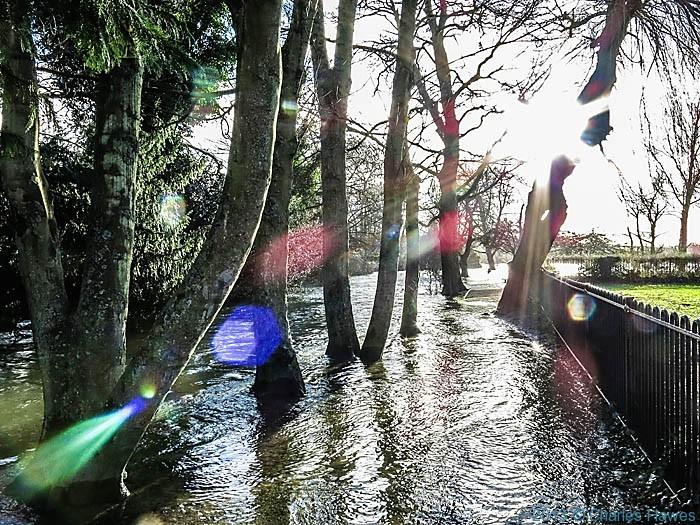Flooded footpath in Queen Elizabeth Gardens, Salisbury, photographed by Charles Hawes