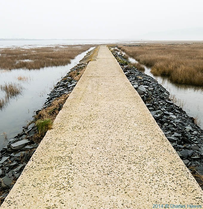 The Wales Coast Path near Shell Island, Gwynedd, photographed by Charles Hawes