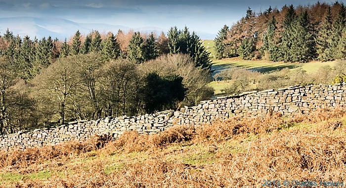 Dry stone wall near Sugar Loaf, Abergavenny, Monmouthshire, photographed by Charles Hawes