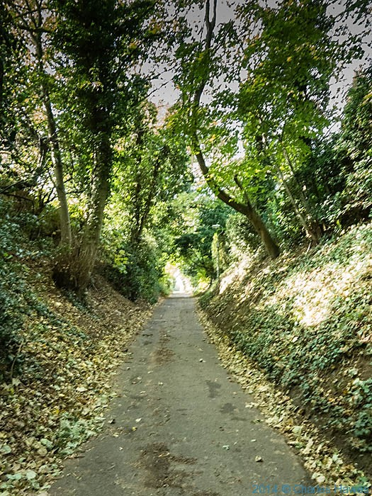 mill Lane, The North Downs way near canterbury, photographed by Charles Hawes