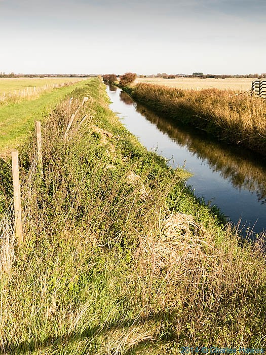 The Little Stour near Canterbury, photographed by Charles Hawes