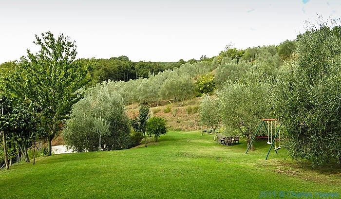 The grounds of Terre di Baccio, photographed by Charles Hawes