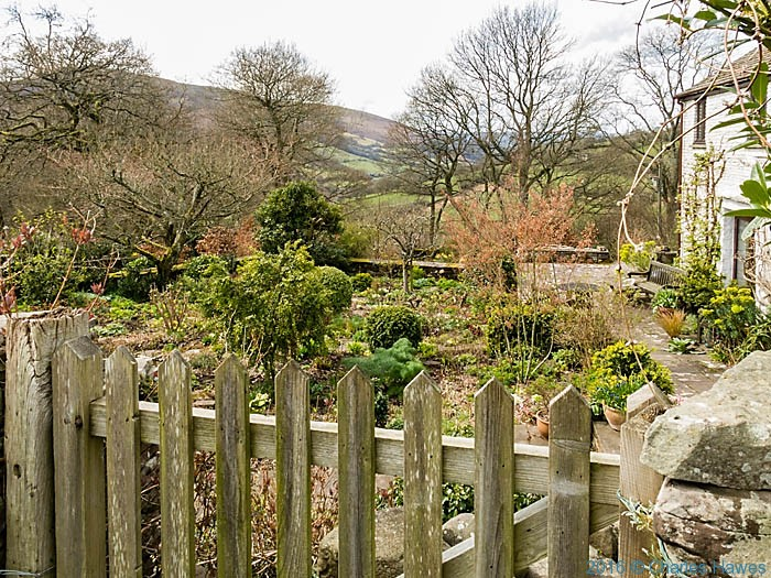 Stephen Anderton's Front Garden, photographed from The Cambrian Way by Charles Hawes