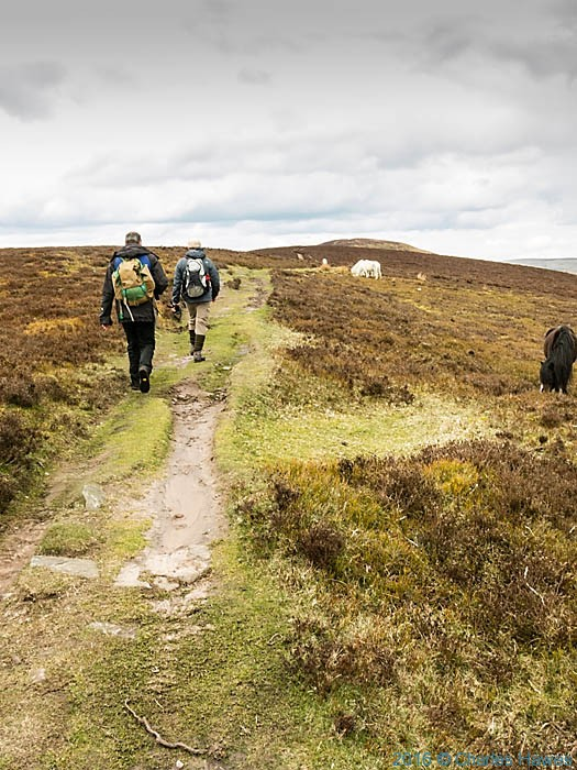 Cambrian way near Bal Mawr, photographed by Charles Hawes
