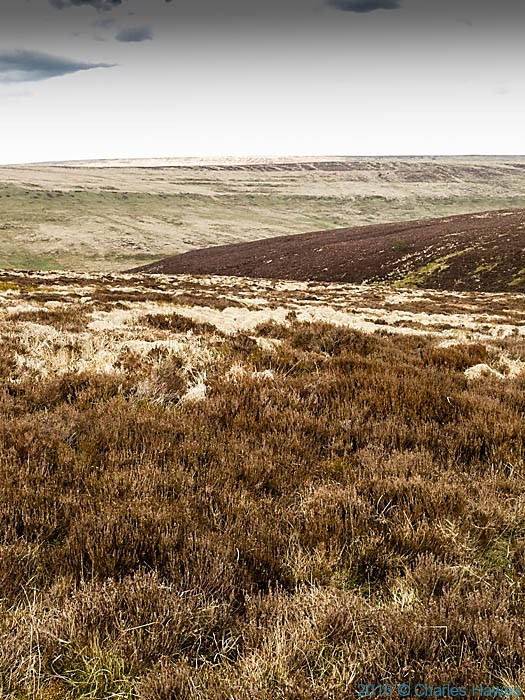 Post image for Cambrian Way: Day 7 – Forest Coalpit to Lord Hereford's Knob (or Twmpa for the more delicate reader)