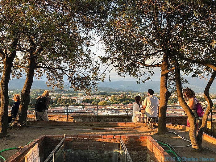Views from the Guinigi Tower, Lucca, Italy, photographed by Charles Hawes
