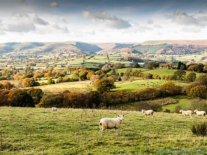View to the Brecon Beacons from Cambrian Way north of Llandovery, Carmarthenshire, photographed by Charles Hawes