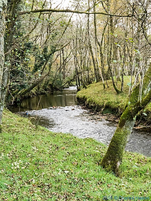 Tributary of the River Towy near Rhandirmwyn photographed from The Cambrian Way by Charles Hawes