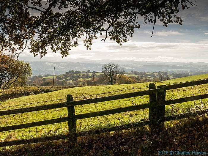 Cambrian Way north of Llandovery, Carmathenshire, photographed by Charles Hawes