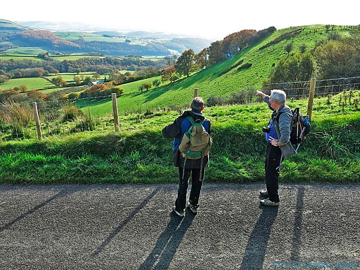 Post image for Cambrian Way day 14: Llandovery to near Rhandirmwyn