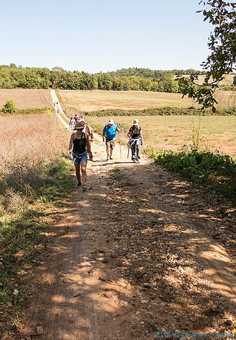 IWW group walking the Via Francigena photographed by Charles Hawes
